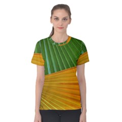 Pattern Colorful Palm Leaves Women s Cotton Tee