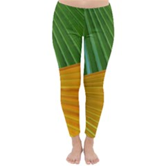 Pattern Colorful Palm Leaves Classic Winter Leggings