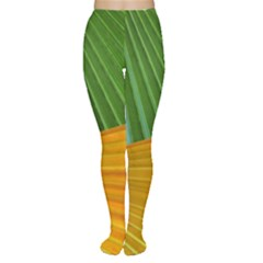 Pattern Colorful Palm Leaves Women s Tights