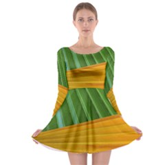 Pattern Colorful Palm Leaves Long Sleeve Skater Dress