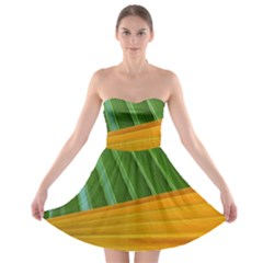 Pattern Colorful Palm Leaves Strapless Bra Top Dress