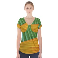Pattern Colorful Palm Leaves Short Sleeve Front Detail Top