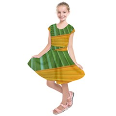 Pattern Colorful Palm Leaves Kids  Short Sleeve Dress