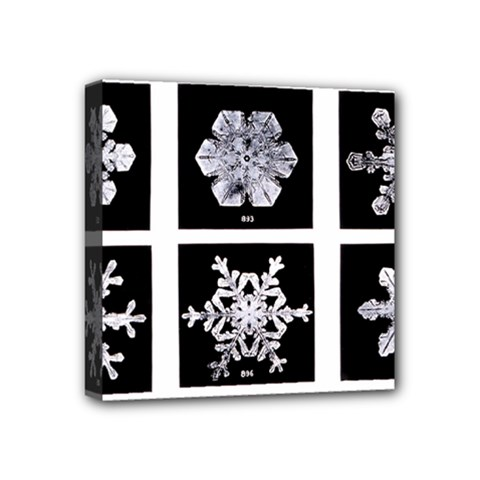 Snowflakes Exemplifies Emergence In A Physical System Mini Canvas 4  X 4