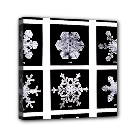 Snowflakes Exemplifies Emergence In A Physical System Mini Canvas 6  x 6