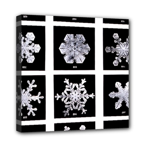 Snowflakes Exemplifies Emergence In A Physical System Mini Canvas 8  X 8