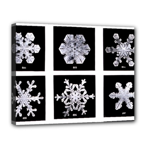 Snowflakes Exemplifies Emergence In A Physical System Canvas 14  X 11
