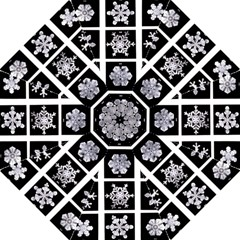 Snowflakes Exemplifies Emergence In A Physical System Folding Umbrellas