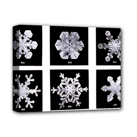 Snowflakes Exemplifies Emergence In A Physical System Deluxe Canvas 14  X 11