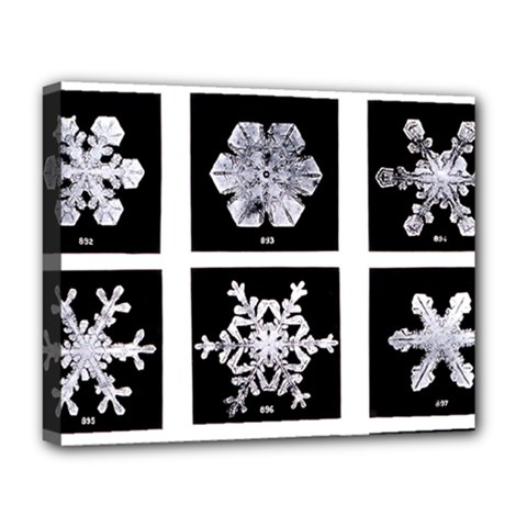 Snowflakes Exemplifies Emergence In A Physical System Deluxe Canvas 20  X 16