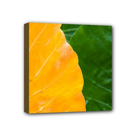 Wet Yellow And Green Leaves Abstract Pattern Mini Canvas 4  X 4
