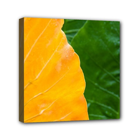 Wet Yellow And Green Leaves Abstract Pattern Mini Canvas 6  X 6