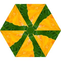 Wet Yellow And Green Leaves Abstract Pattern Mini Folding Umbrellas