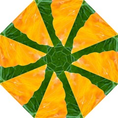 Wet Yellow And Green Leaves Abstract Pattern Hook Handle Umbrellas (large)