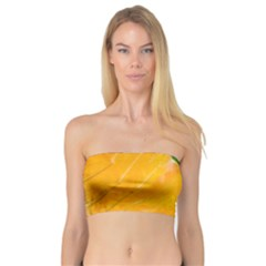 Wet Yellow And Green Leaves Abstract Pattern Bandeau Top