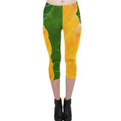 Wet Yellow And Green Leaves Abstract Pattern Capri Leggings