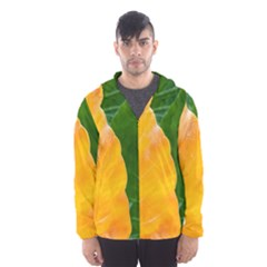 Wet Yellow And Green Leaves Abstract Pattern Hooded Wind Breaker (men)