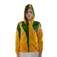 Wet Yellow And Green Leaves Abstract Pattern Hooded Wind Breaker (women)