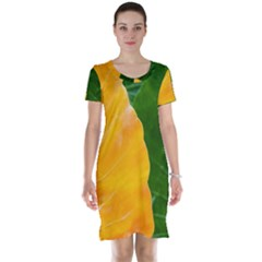 Wet Yellow And Green Leaves Abstract Pattern Short Sleeve Nightdress