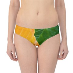 Wet Yellow And Green Leaves Abstract Pattern Hipster Bikini Bottoms
