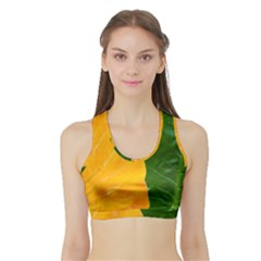 Wet Yellow And Green Leaves Abstract Pattern Sports Bra With Border