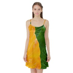 Wet Yellow And Green Leaves Abstract Pattern Satin Night Slip