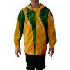 Wet Yellow And Green Leaves Abstract Pattern Hooded Wind Breaker (kids)