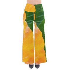 Wet Yellow And Green Leaves Abstract Pattern Pants