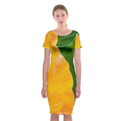 Wet Yellow And Green Leaves Abstract Pattern Classic Short Sleeve Midi Dress