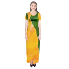 Wet Yellow And Green Leaves Abstract Pattern Short Sleeve Maxi Dress
