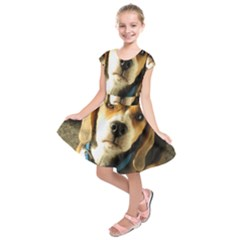Beagle Kids  Short Sleeve Dress