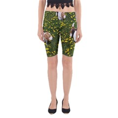 Beagle In Dandilions Yoga Cropped Leggings