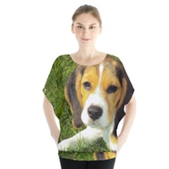 Beagle Puppy Blouse