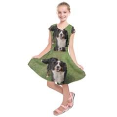 Bernese Mountain Dog Full Kids  Short Sleeve Dress