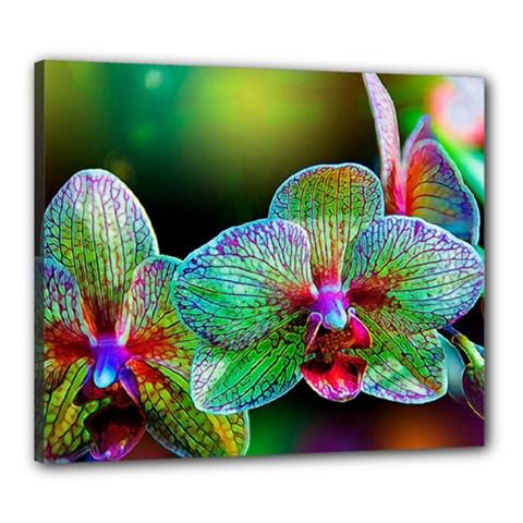 Alien Orchids Floral Art Photograph Canvas 24  X 20