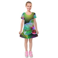 Alien Orchids Floral Art Photograph Kids  Short Sleeve Velvet Dress