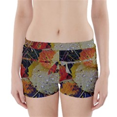 Autumn Rain Yellow Leaves Boyleg Bikini Wrap Bottoms