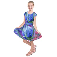 Blue Flowers With Thorns Kids  Short Sleeve Dress