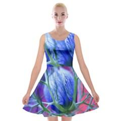 Blue Flowers With Thorns Velvet Skater Dress