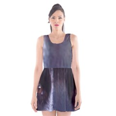 Border Collie B W Eyes Scoop Neck Skater Dress