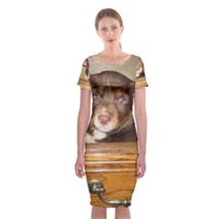 Border Collie Puppy In Drawr Classic Short Sleeve Midi Dress