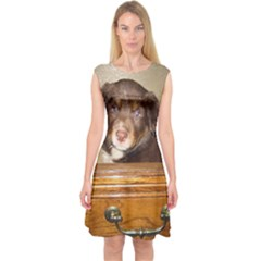 Border Collie Puppy In Drawr Capsleeve Midi Dress