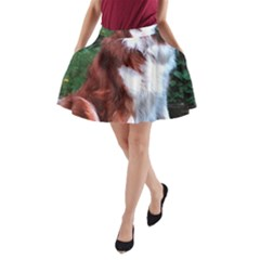 Border Collie Sitting 2 A-Line Pocket Skirt