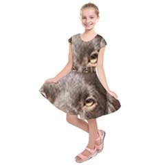 Boykin Eyes Kids  Short Sleeve Dress