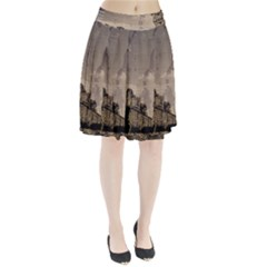 Chittorgarh Pleated Skirt
