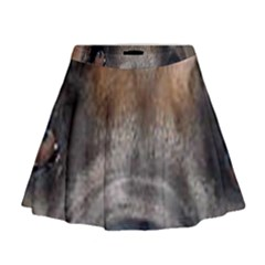 Cane Corso Eyes Mini Flare Skirt