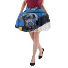 Cane Corso Pup A-Line Pocket Skirt