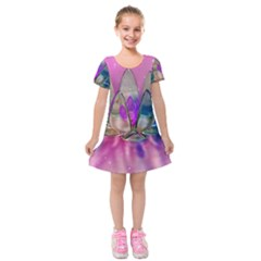 Crystal Flower Kids  Short Sleeve Velvet Dress