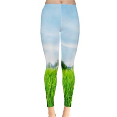 Green Landscape Green Grass Close Up Blue Sky And White Clouds Leggings