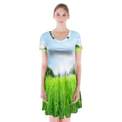 Green Landscape Green Grass Close Up Blue Sky And White Clouds Short Sleeve V-neck Flare Dress